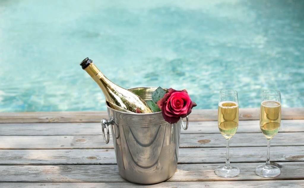 Лучшие сорта шампанского: посадка и уход