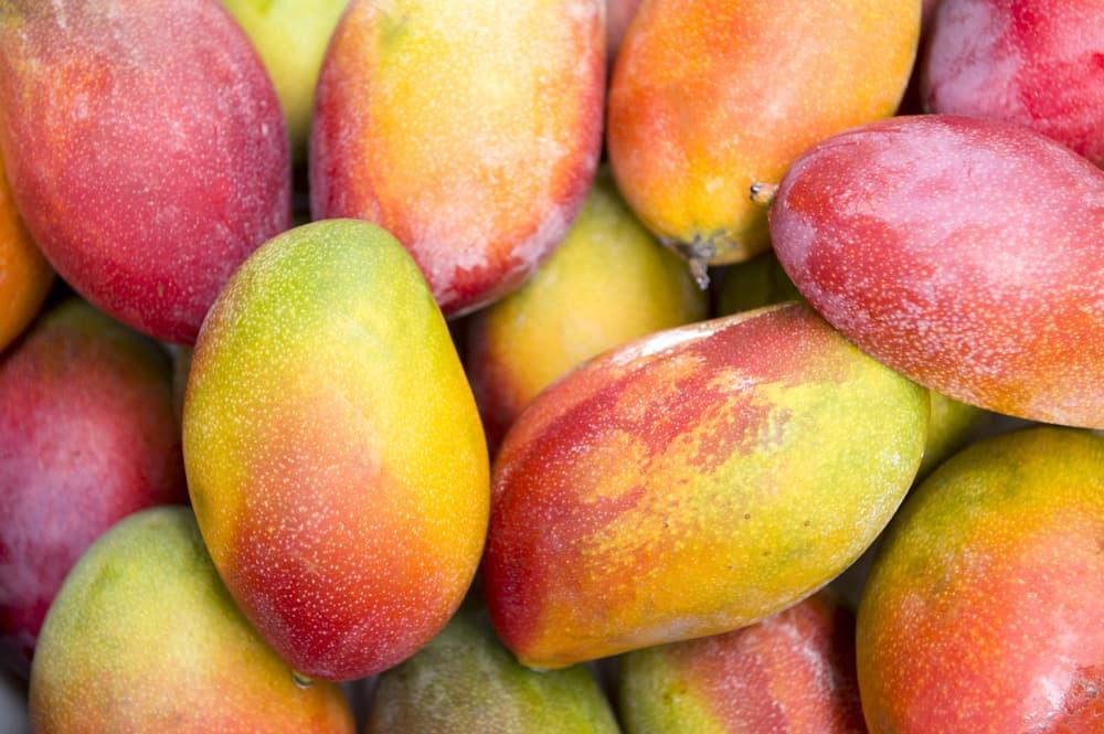 yak-pravylno-vybraty-mango-3