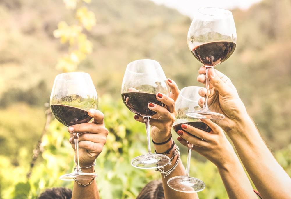 molode-vyno-smak-vlastyvosti-3