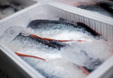 obyrayemo-zamorozhenu-rybu-u-glazuri